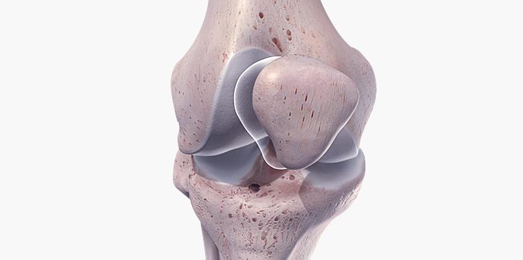 osso do joelho